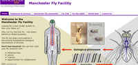 Manchester Fly Facility homepage
