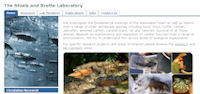 The Shiels Laboratory homepage
